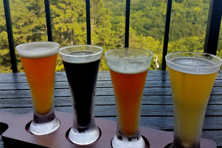 tasting flight of craft beers